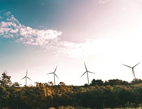 sustainability and ecommerce